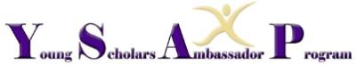 Davidson Young Scholars Ambassador Program logo